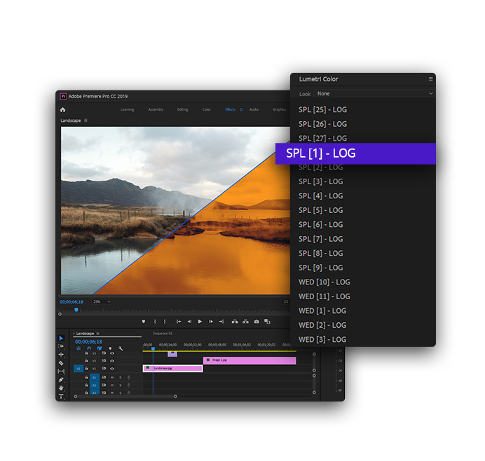 Film Looks - LUTs Color Preset Pack: Settings